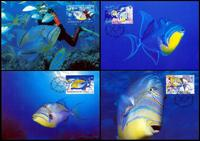 Barbados Queen Triggerfish Set of 4 official Maxicards