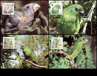 Jamaica Black-billed Amazon Set of 4 official Maxicards