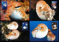 Palau Chambered Nautilus Set of 4 official Maxicards