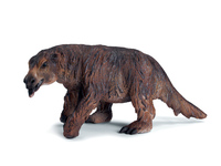 Giant Ground Sloth (Megatherium)