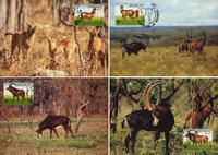 Angola Giant Sable Antelope Set of 4 official Maxicards