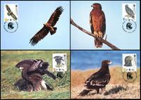 Georgia Greater Spotted Eagle Set of 4 official Maxicards