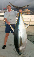 Thunnus albacares, Yellowfin tuna: fisheries, gamefish