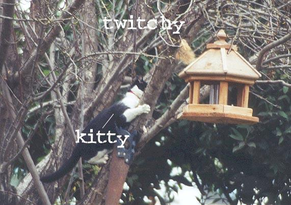 TWITCHY vs. KITTY 58.3K; Image ONLY